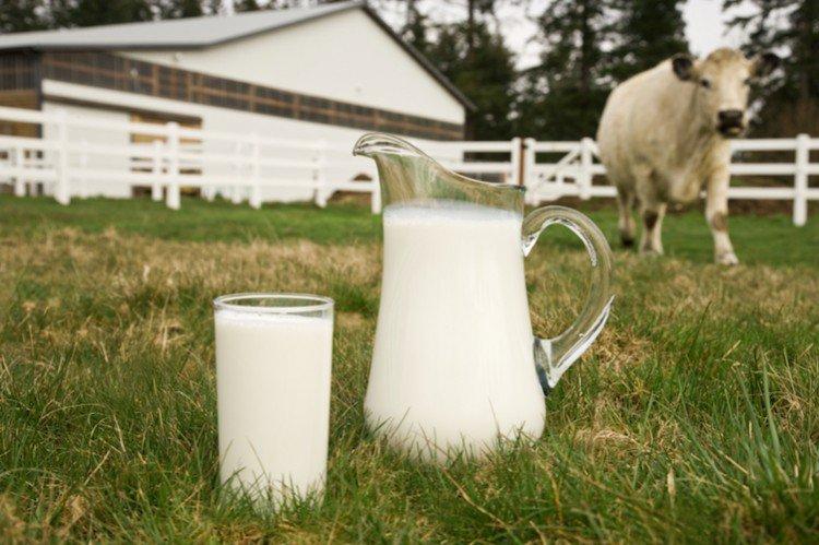 Latte – nasce l'etichetta a difesa del latte 100% italiano