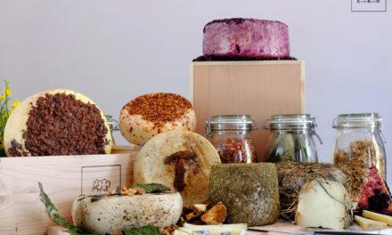 Carmasciando ricrea il circolo biologico nel mondo dei formaggi