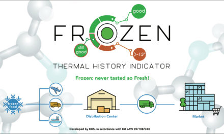 FROZEN: Thermal History Indicator