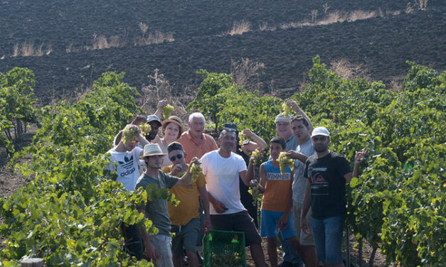 VALDIBELLA IL BIOLOGICO IN Sicilia